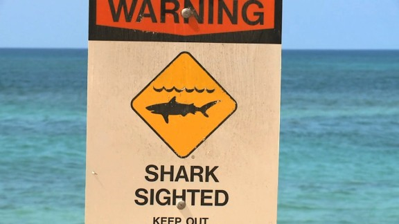 A man was bit by a shark. This is the area where it happened.     Date Shot:  09 Oct 2015    Location Shot:  North Shore of Oahu