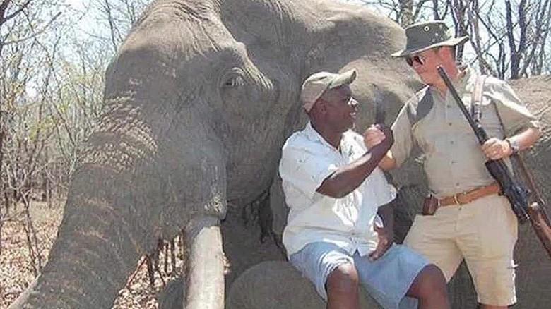 Huge Elephant Killing Sparks Outrage