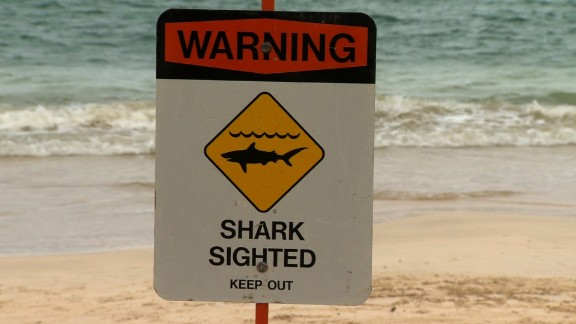 10 mile stretch of beach cleared after shark attacks swimmer off Hawaiian Island of Oahu