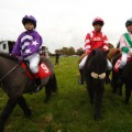 Shetland Pony Gold Cup 2