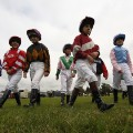 Shetland Pony Gold Cup 6