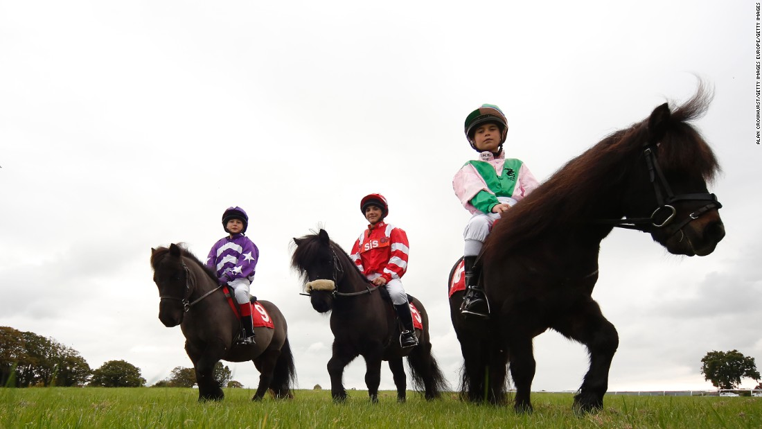 Is this the world's most adorable horse race? The annual Shetland Pony Gold Cup sees children take to the saddle.