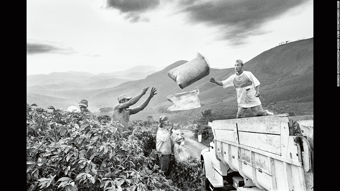 People harvest coffee in the Brazilian state of Minas Gerais in 2002.