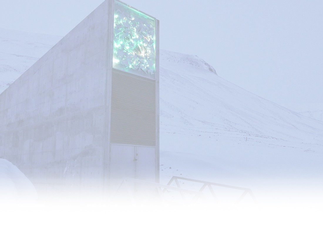 After The Apocalypse Inside The Doomsday Seed Vault Cnn