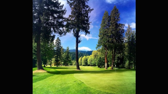 """The combination of vivid greens and browns in @c4rtp4th's submission is synonymous with the Pacific Northwest. """"The four towering pine trees will reject any garbage you throw at the green. Love a golf hole that makes you think and work for a good score,"""" he said."""