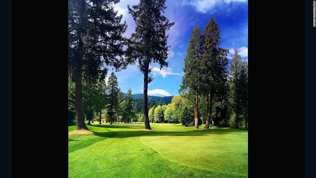 "The combination of vivid greens and browns in <a href=""https://instagram.com/c4rtp4th/"" target=""_blank"">@c4rtp4th</a>'s submission is synonymous with the Pacific Northwest. ""The four towering pine trees will reject any garbage you throw at the green. Love a golf hole that makes you think and work for a good score,"" he said."