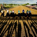 american pharoah belmont start