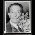 10 Artists and their Cats_SalvadorDali.jpg RESTRICTED