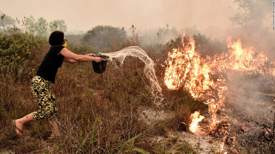 A villager tries to extinguish a peatland fire on the outskirts of Palangkaraya on October 26.