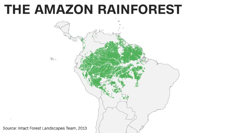 Brazil on the front lines in battle to protect amazon cnn burning rain forests and deforestation account for anywhere from 5 to 20 of global greenhouse gas emissions per year according to calculations made by gumiabroncs Choice Image