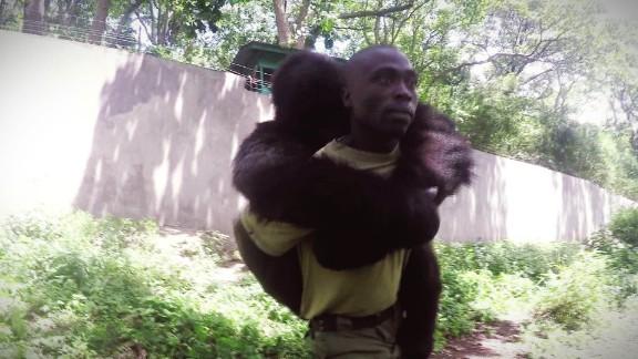 Inside Africa - Gorillas, Elephants and Lava Lake_00000301.jpg