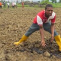 Niger Delta oil contam land 3