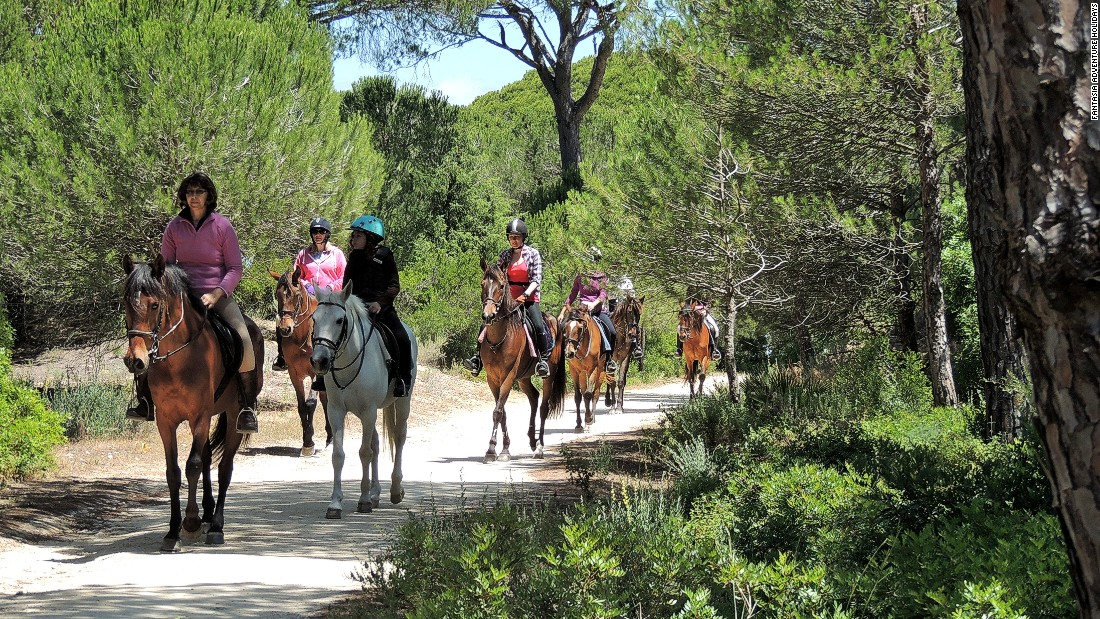 As well as the unspoilt beaches of the Costa de la Luz, there are coastal trails through pine forests, offering tranquility and a counterbalance to the exhilaration of galloping across the sand flats and  breakers.