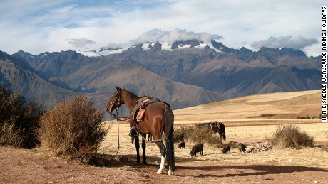 The views and the ride are equally attractive in South America thanks to the native Peruvian Paso.