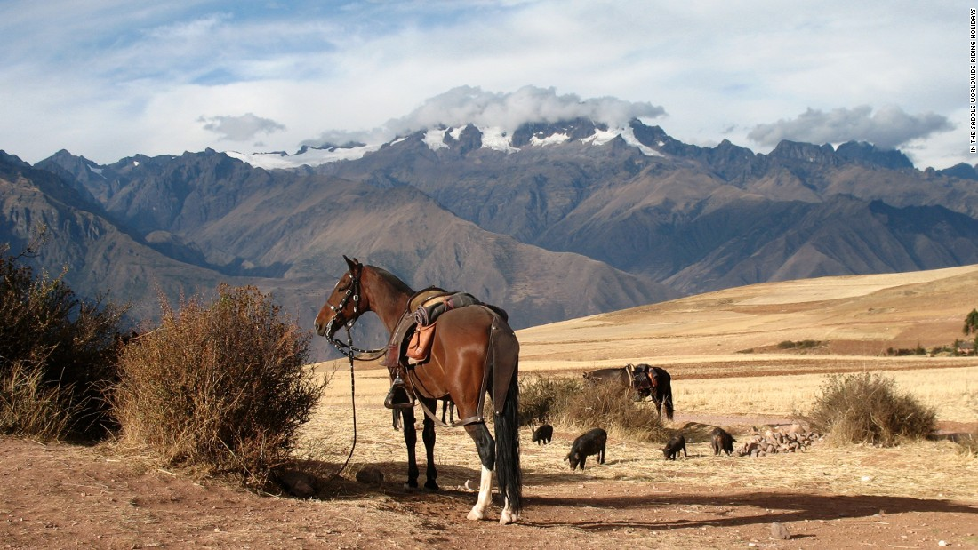 """They have a really smooth gait. It's just a joy to ride them no matter where you are and then you have the added aspect of being in the Peruvian mountains in the Sacred Valley near Cusco,"" Sales says."