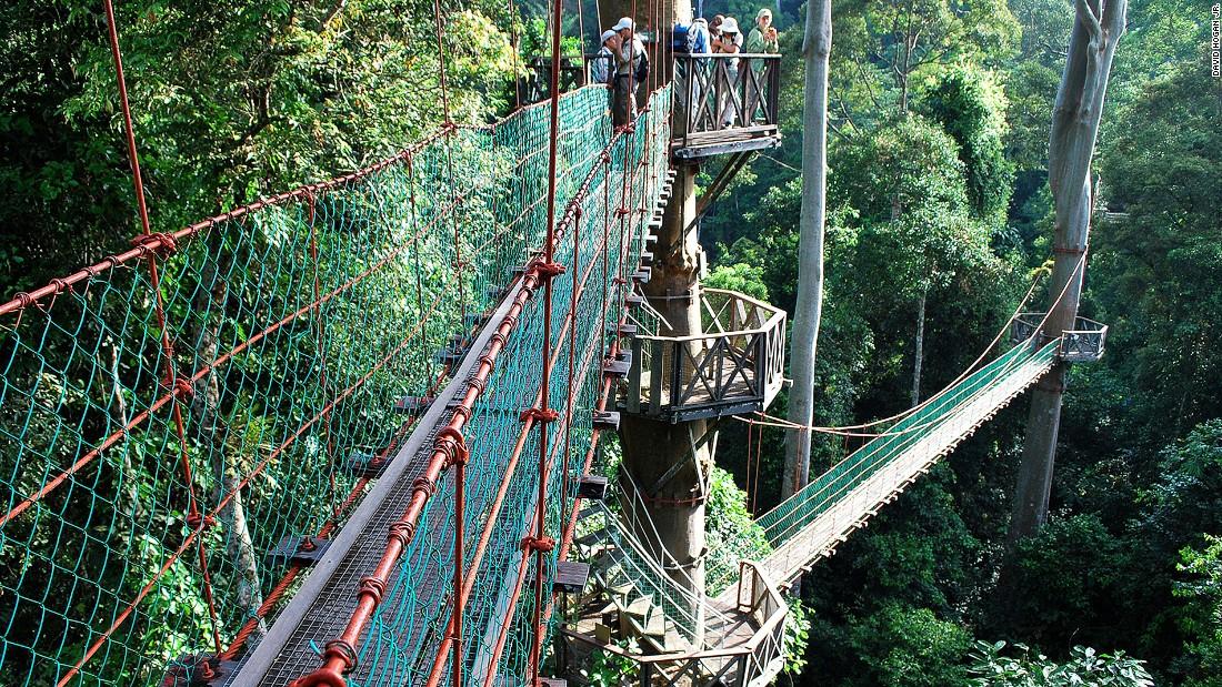 & Malaysia: 12 rainforest resorts | CNN Travel