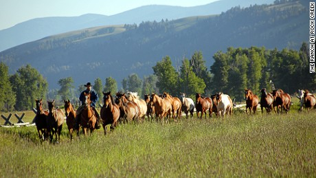 If you've ever dreamed of riding in the Old West then a trip to Montana could be the perfect holiday.
