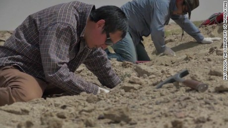 On China: Meet China's top dinosaur hunter