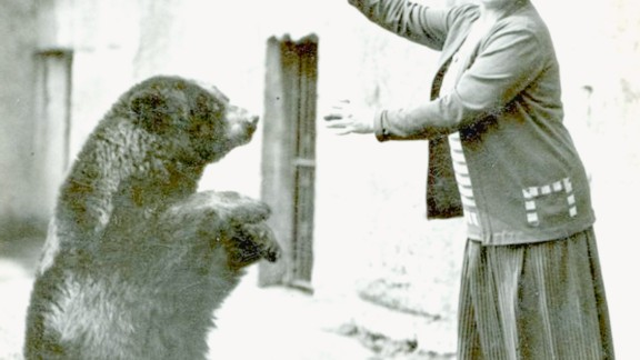 The original Canadian black bear is pictured here at the London Zoo, with a visitor.