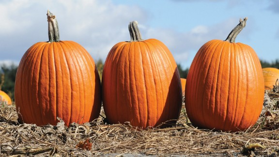 This big jack-o-lantern can grow more than 30 pounds. It's great for carving and for pumpkin pie. Roast the seeds or use them as a great nutty element for baking.