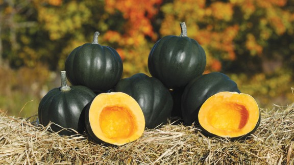 """This deliciously starchy and sweet squash is on the smaller size.  <a href=""""http://biolsci.unh.edu/faculty/loy"""" target=""""_blank"""" target=""""_blank"""">Brent Loy</a> at the University of New Hampshire created it and was an All-American award winner for 2009.  The seeds and fruit are great for roasting."""