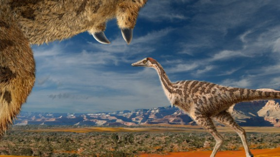 This parrot-sized species of dinosaur had only finger. It was discovered in Inner Mongolia and named after the city of Linhe.