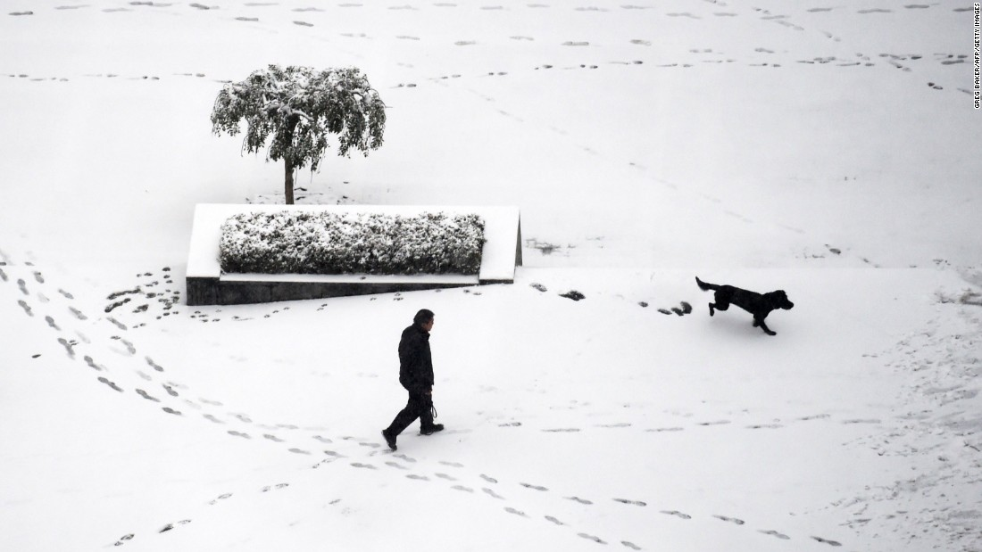 A man walks his dog in the snow in Beijing.