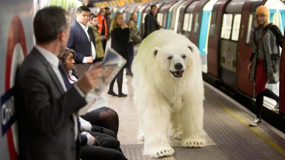 "January 27: An animatronic polar bear visits the London Underground to mark the launch of ""Fortitude,"" Sky Atlantic's new TV drama."