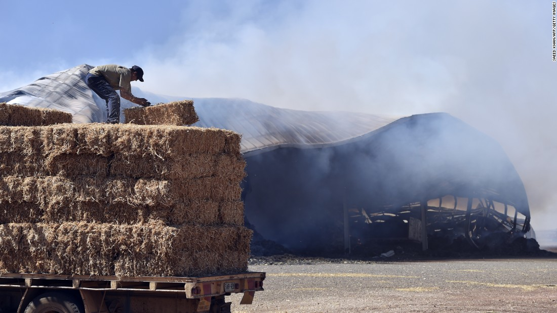 A farmer moves fodder away from a burning warehouse following bushfires north of Adelaide on November 26. The blaze has left pastures scorched and crops in ruins.