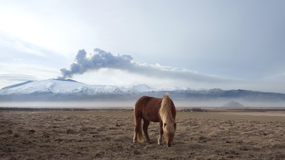 """For Guðleifsdóttir, the beauty of the land that the Icelandic horse naturally inhabits is just as important for her photos as the subjects themselves. """"I like to capture them like they're wild as it's really important for me as a photographer to help capture just how appealing Iceland really is as I'm so proud of it,"""" she says."""