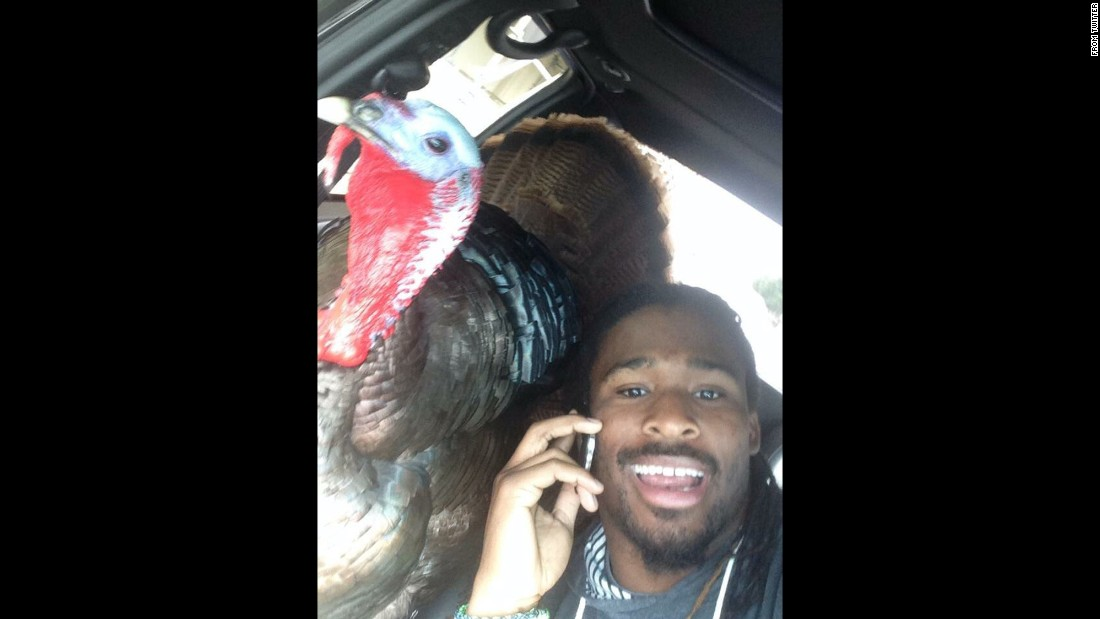 "Pittsburgh Steelers running back DeAngelo Williams <a href=""https://twitter.com/DeAngeloRB/status/669971030551740416"" target=""_blank"">tweets a selfie</a> with a live turkey on Thursday, November 26. ""Happy Thanksgiving from the 2 of us!!!"" Williams said."