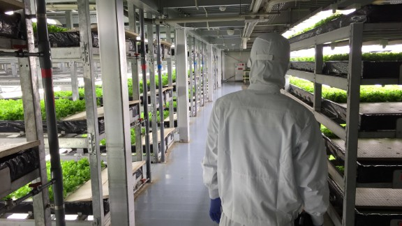Spread, Japan -- Many view Japan as an early adopter of vertical farm technology. Spread, founded in 2006, says it shipped 7.7 million heads of lettuce across Japan in 2015, with the company reporting it achieved profitability in 2013.