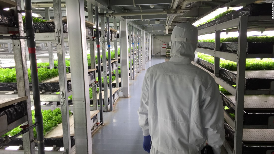 "Japan adopted vertical farm technology relatively early. Spread, founded in 2006, says it shipped <a href=""https://cnn.com/travel/article/kyoto-vertical-farm-spread/index.html"">7.7 million </a>factory-grown heads of lettuce across Japan in 2015."