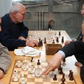 armenia chess old men