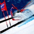 ligety beaver 1 gate crash shaw