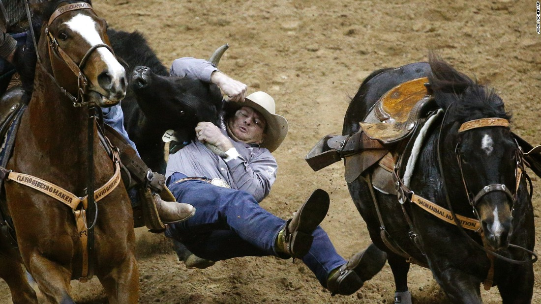 Hunter Cure wrestles a steer Thursday, December 3, during the National Finals Rodeo in Las Vegas. He tied for third in the event.