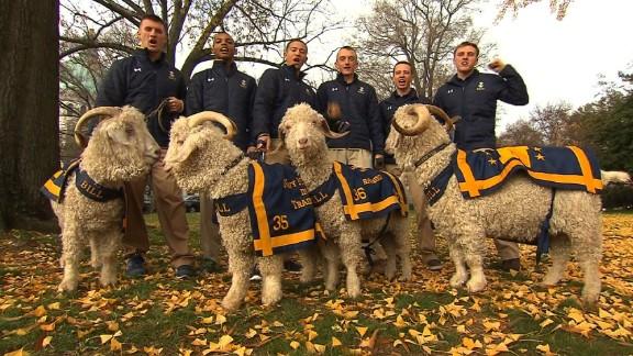 Bill the Goat at Navy