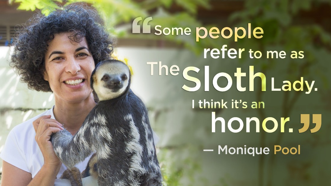 Monique Pool and her group have rescued, rehabilitated and released more than 600 sloths and other animals back to the rainforest in Suriname.