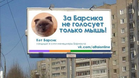 A photoshopped image by Altai Online of the cat on a billboard in Barnual