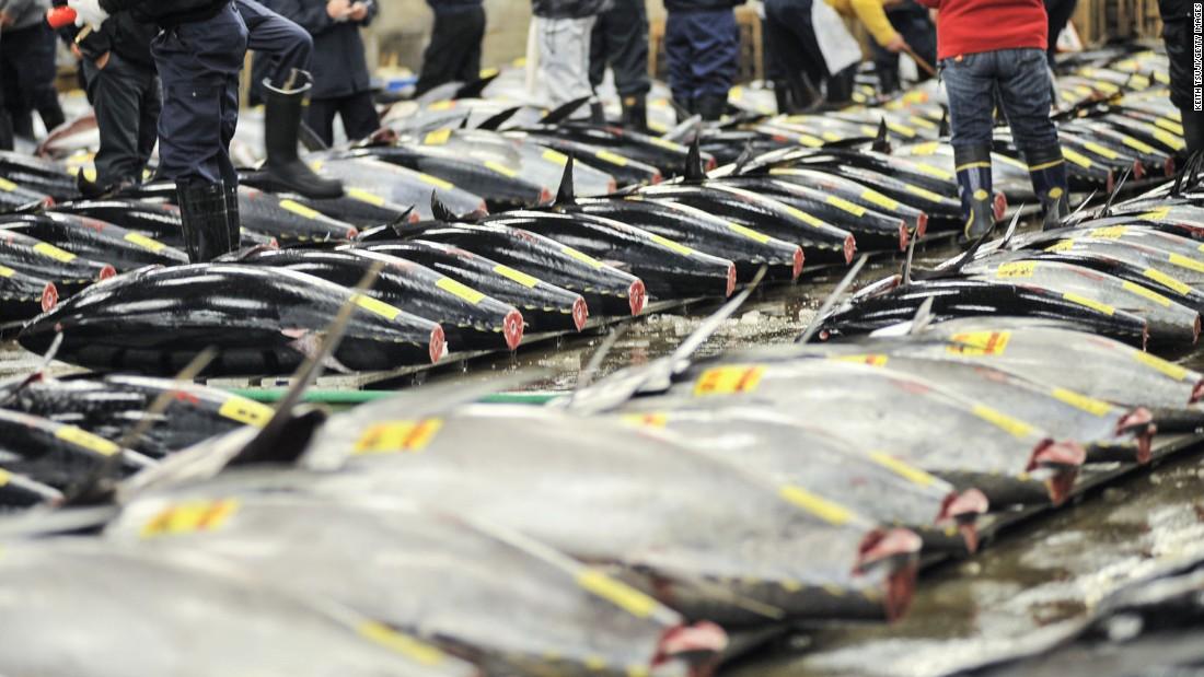 End of an era as Tokyo fish market closes