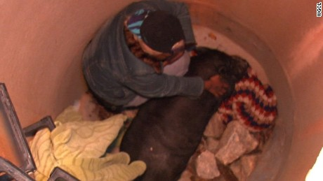 A pig owner is in 'Hog Heaven' after the Atlanta Fire Department pulled a pig out of a deep well.