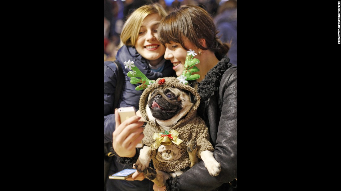People in Kiev, Ukraine, take a selfie at a parade where the most elegant Christmas pug was chosen on Saturday, December 26.
