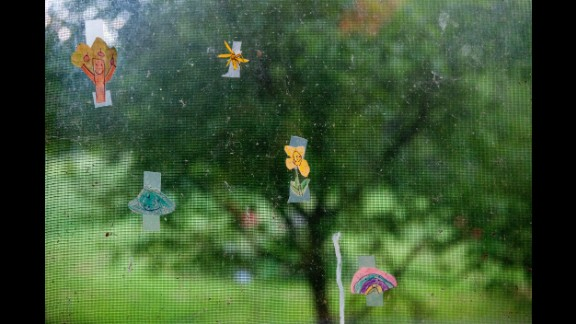 Drawings are taped to a window screen in True's house in 2012. True loves to explore nature, and her artistic talent and creativity are evident in every corner of her house and its surroundings.