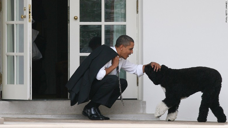 Famous pets in the White House