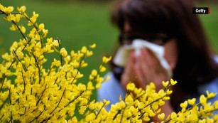 What causes allergies?