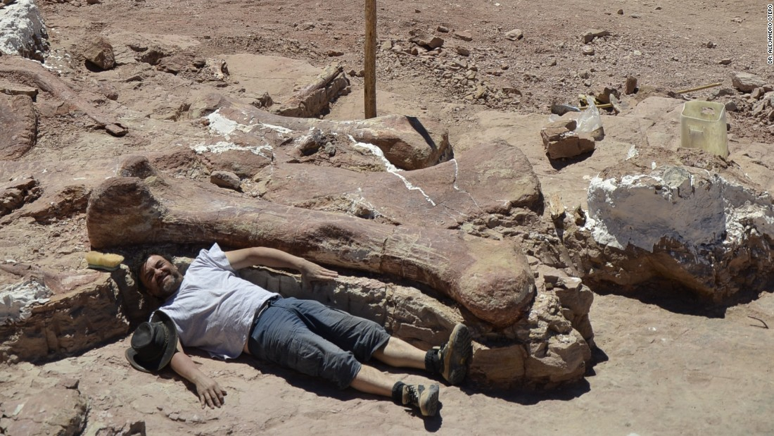 Dr. Alejandro Otero poses next to a piece of the new titanosaur species discovered in Argentinian Patagonia in 2014.