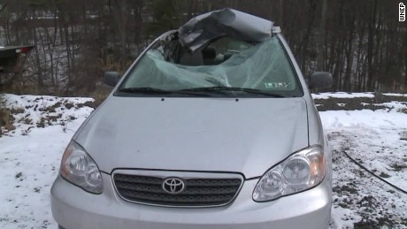 Bizarre Crash Deer Back Seat Car pkg_00003617.jpg