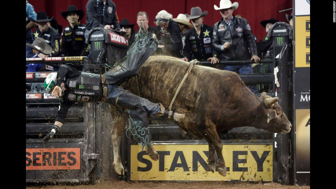 Gage Gay falls from Savage Jacket during a bull-riding event in New York on Friday, January 15.