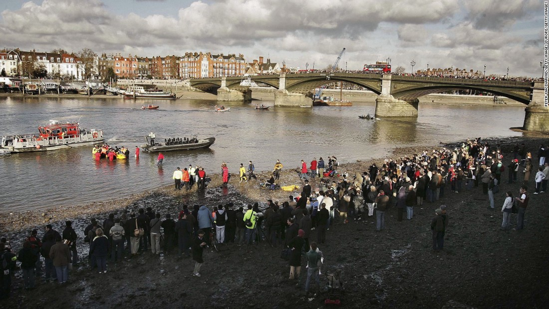 In January 2006 a northern bottlenose whale swam up the Thames, and got stranded in central London, bringing thousands of people on the banks. The whale died during a rescue attempt.