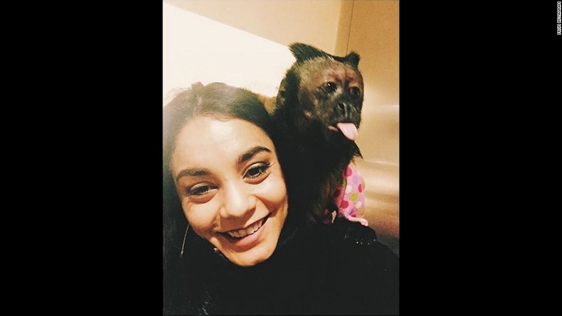"Actress Vanessa Hudgens takes a selfie with Crystal the monkey, who she called a ""sweetheart superstar"" on Wednesday, January 20. ""Yes. She was the monkey in The Hangover,"" <a href=""https://www.instagram.com/p/BAxkeoMzCl5/"" target=""_blank"">Hudgens said on Instagram.</a> ""Right after this she licked my face."""